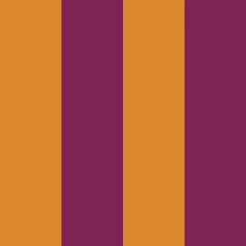riga viola/giallo