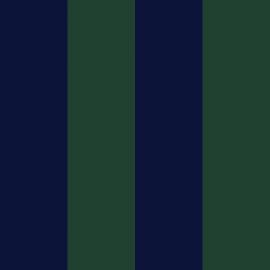 riga blu/verde